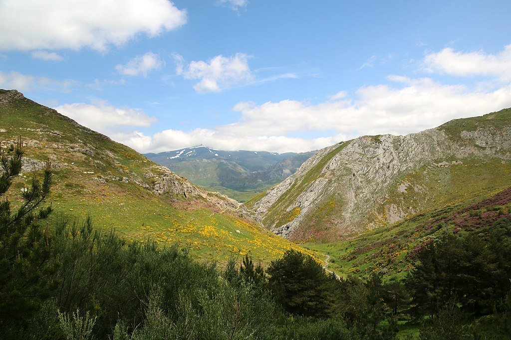 Camino_de_San_Salvador